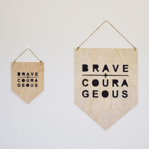 Brave-+-Courageous_Ply_Set